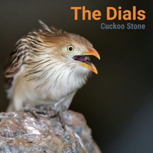 the dials - cuckoo stone - single cover